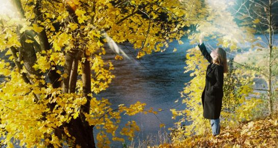 girl by the tree with yellow leaves on a sunny autumn day